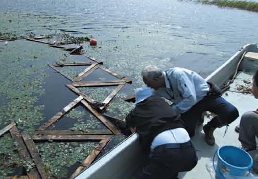 炭素藻による水質浄化試験[大沼支部]