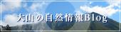 大山の自然情報Blog